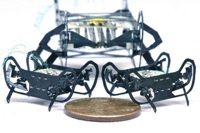 Harvard's HAMR-JR microrobot