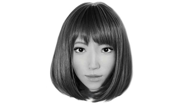 Erica AI actor