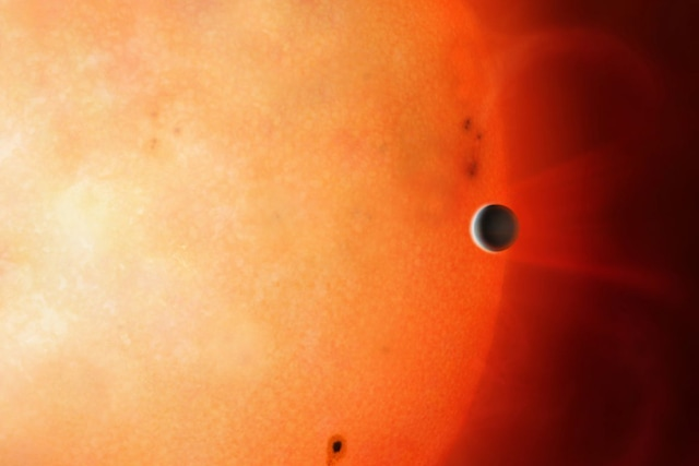 Neptune-sized planet in the Neptunian Desert