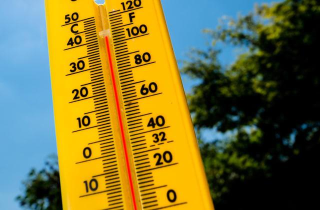 So überstehen Sie die  Hitze-Periode