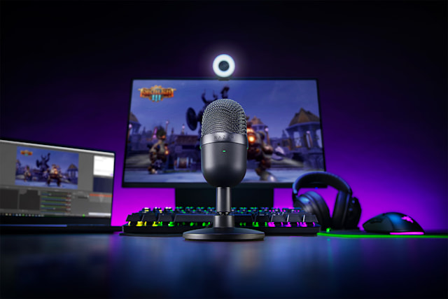 Razer Seiren Mini microphone