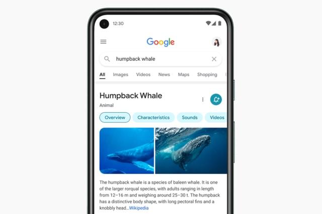 Google mobile search redesign (2021)