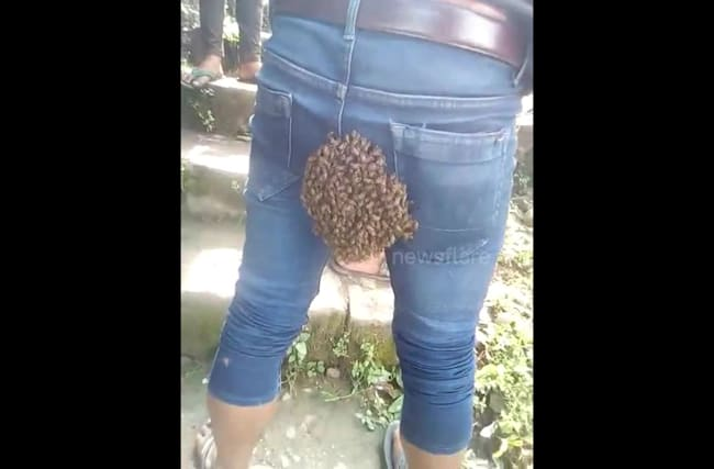 Man in India has hive stuck to his bum
