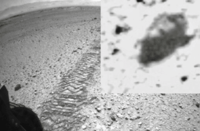 Scientist claims to have spotted insect-like beings in Mars photos