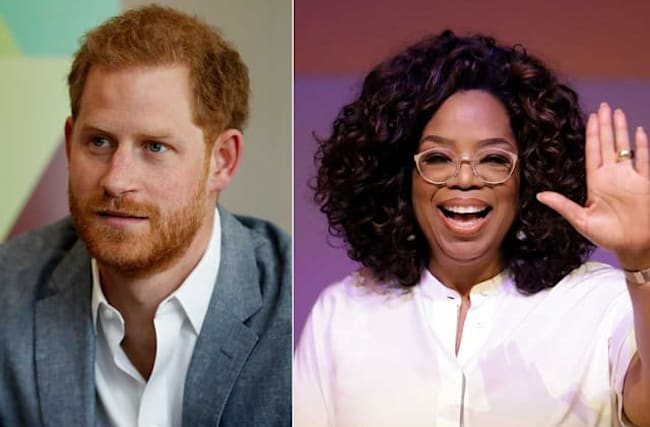 Harry and Oprah's show about 'human spirit fighting back'