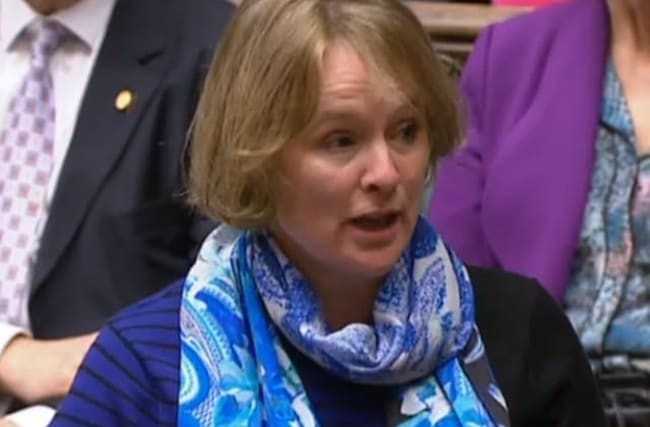 Children's minister accused of 'demonising' families