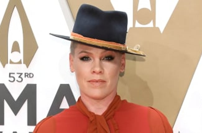 Pink Pledges $500,000 To Fight Australia Wildfires