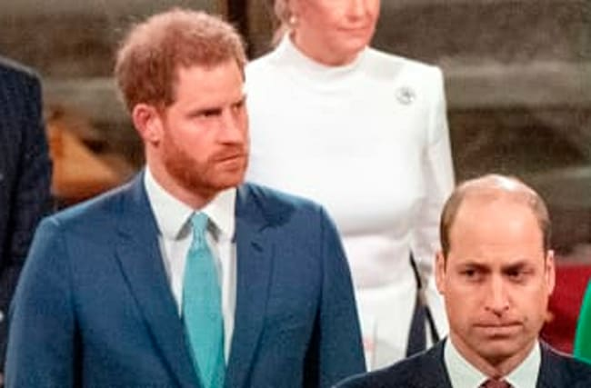 Prince William Thanks Princess Diana Charity On Behalf Of Himself And Harry