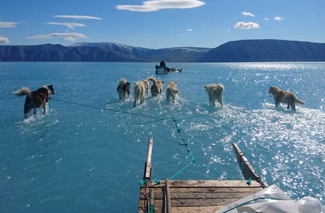 Photo reveals the stark reality of sea ice loss in Greenland
