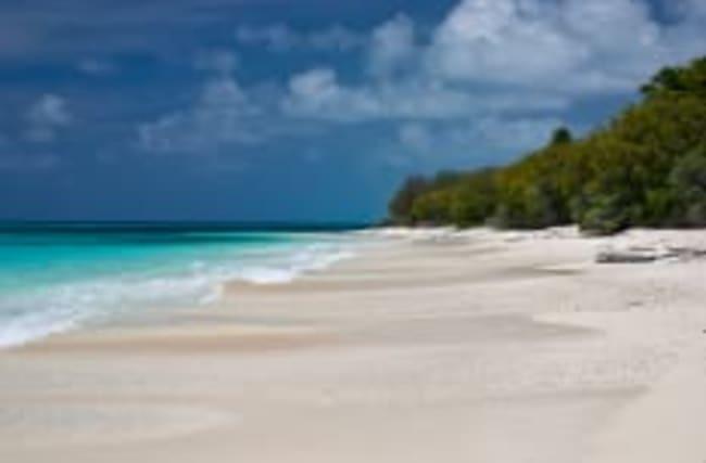 Atomtest-Gelände: Was wurde aus dem Bikini-Atoll?