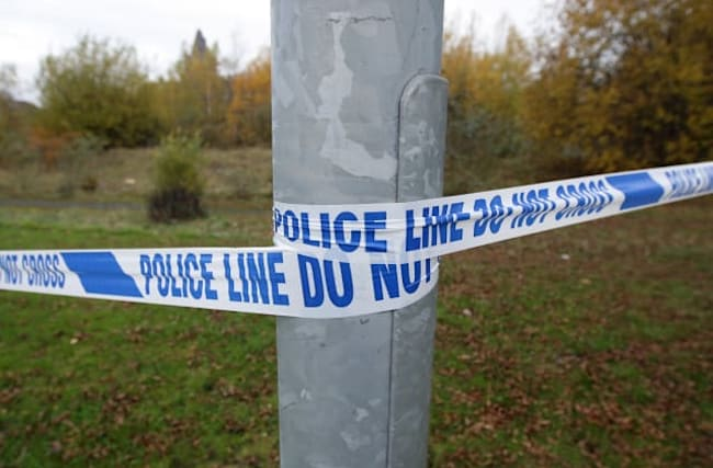 Manhunt after spate of sexual assaults in London park