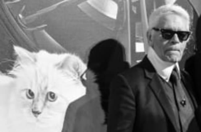So geht es Karl Lagerfelds Katze Choupette