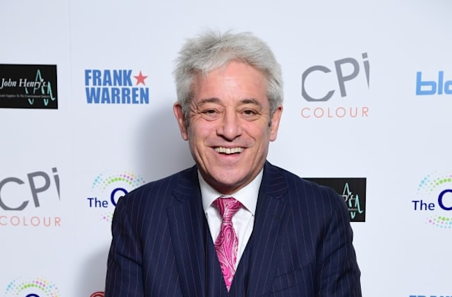 Bercow made professor of politics at London uni