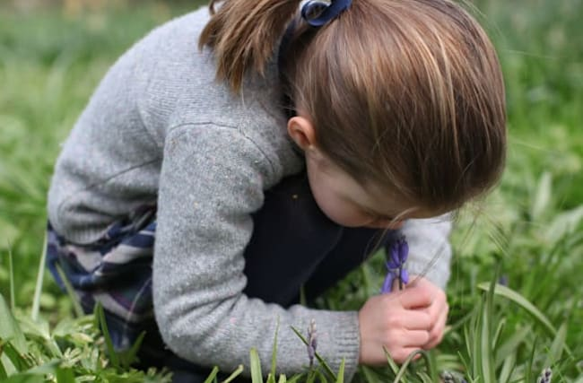 Poignant picture of Charlotte smelling a bluebell released