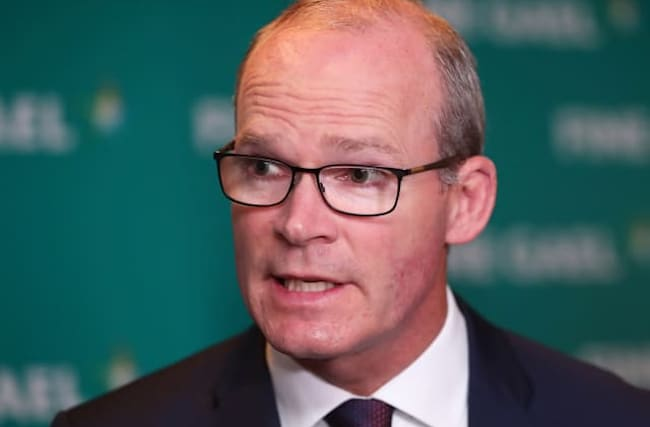 Irish deputy warns of 'significant gap' between UK and EU