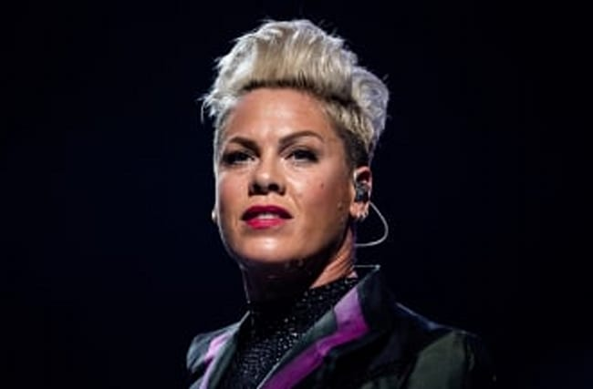 Pink Issues Sarcastic Message For The 'Parenting Police'