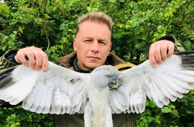 Springwatch presenter says raptor killing 'out of control'