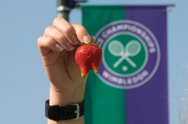 The key questions answered as Wimbledon 2020 is cancelled