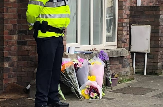 Three children's bodies removed from house in Dublin