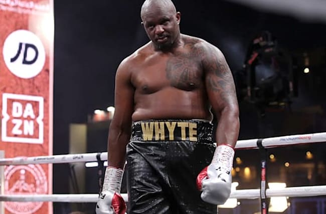 Whyte reinstated as interim champion and will fight for WBC heavyweight title