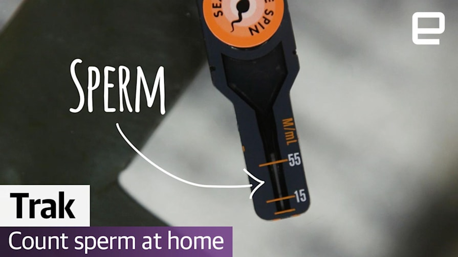 Watch me count my sperm | Computer Love