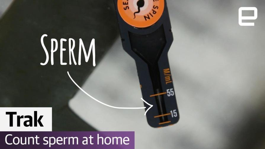 Watch me count my sperm   Computer Love