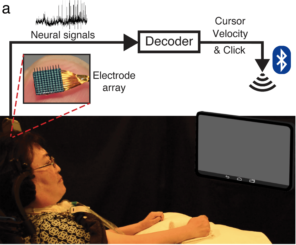 Cortical control of a tablet computer by people with paralysis