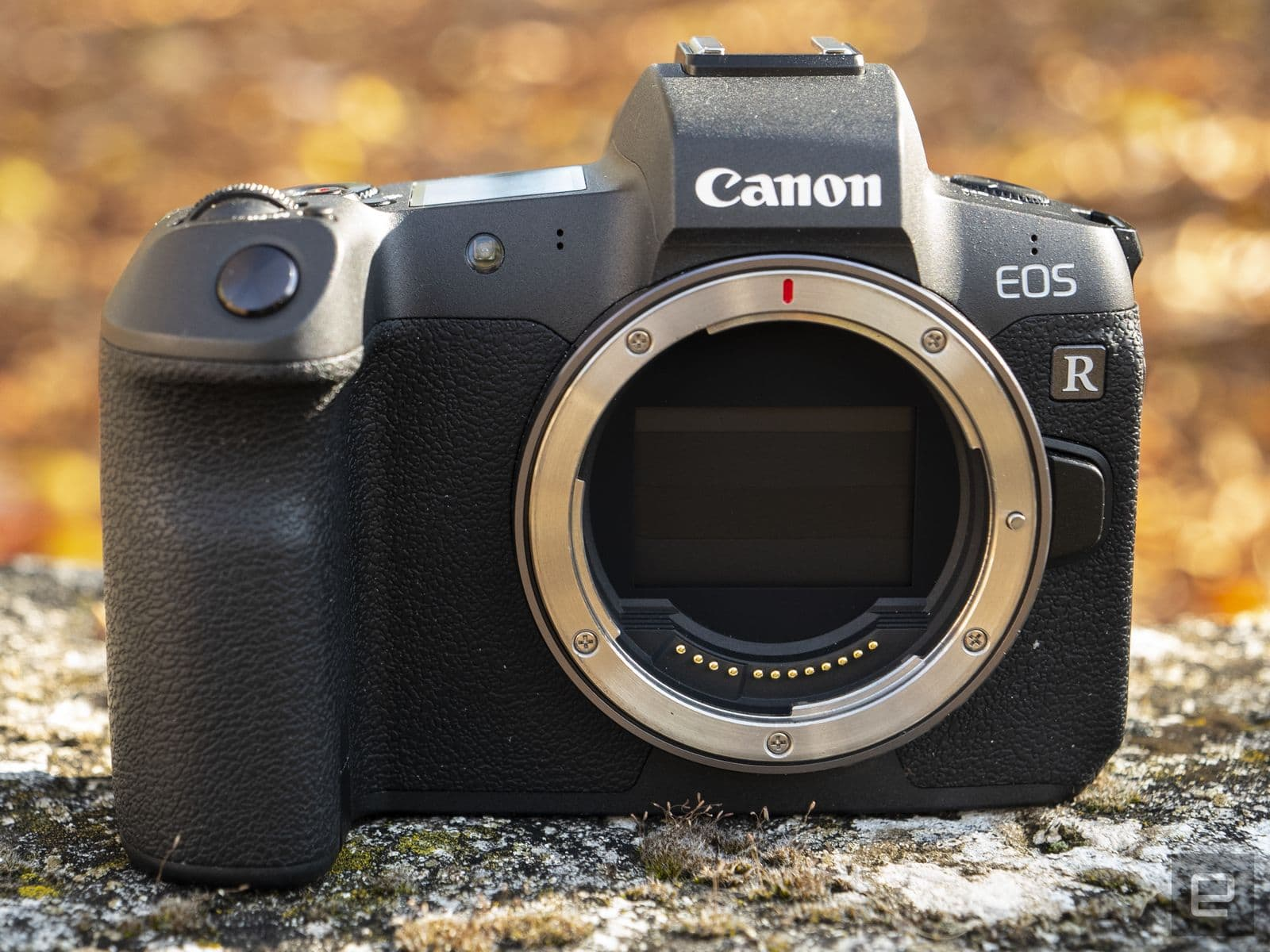 Canon EOS R mirrorless full-frame camera