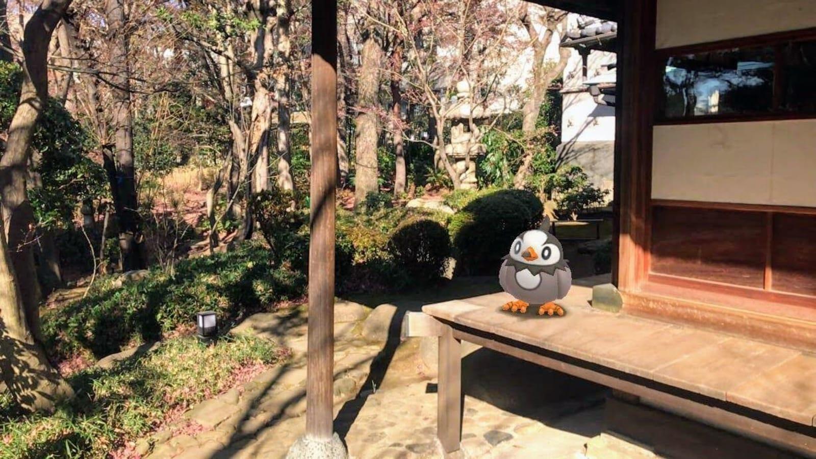 Pokemon Go Snapshot mode