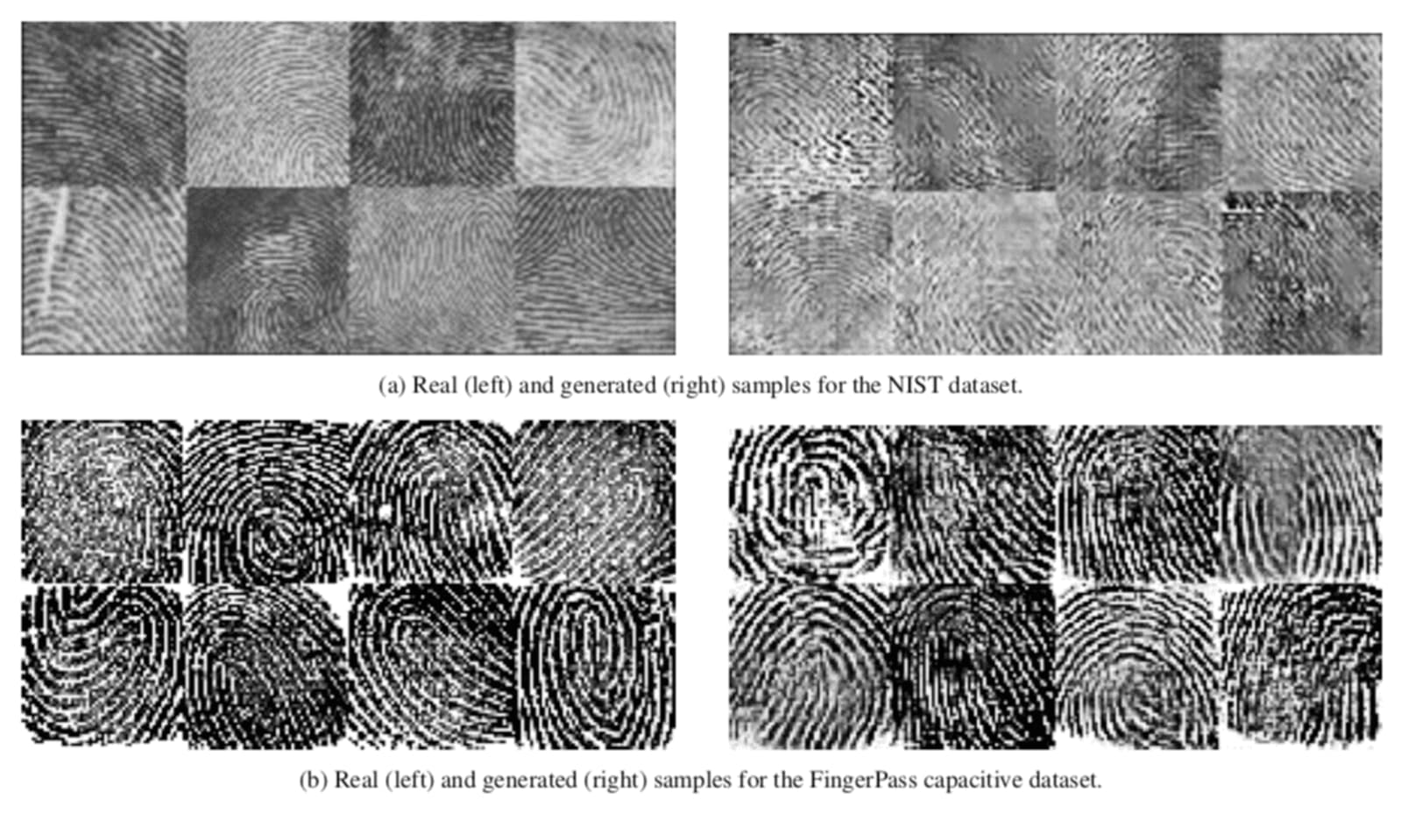Real fingerprints and AI-generated synthetic prints