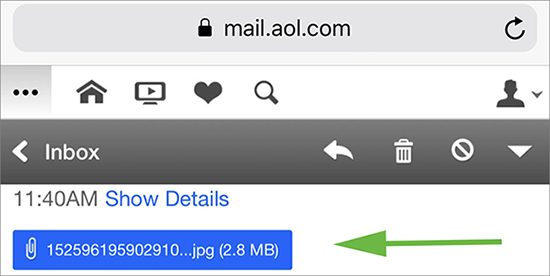 Image of the attachment file in AOL Mail.